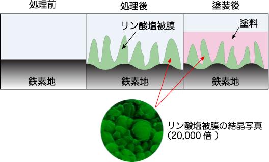 パーカー処理という「化学的ファンデーション」リン酸塩処理の模式図